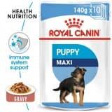 Royal Canin WET FOOD - SHN Maxi Puppy 10x140g (pouches)