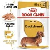 Royal Canin WET FOOD  BHN Dachshund Adult 12x85g (pouches)